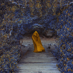 Hiding the identity (Kathy Chareun) Tags: art arte ps photoshop lr lightroom yellow amarillo blue azul tree leaf arbol hoja hojas leafes leaves wood madera forest bosque hood capa day dia patagonia argentina bariloche tex tela dirt tierra fineart fineartphotography portrait retrato woman mujer femme ghost fantasma