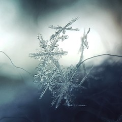 Beautifully balanced (jilllian2) Tags: frozen iphone balance sculpture snowflake outside nature macro