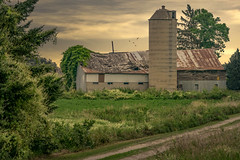 Flourishing (henryhintermeister) Tags: barns minnesota wibarns oldbarns clouds farming countryliving country sunsets storms sunrises pastures nostalgia skies outdoors seasons field hay silos dairybarns building architecture outdoor winter serene grass landscape plant cloudsstormssunsetssunrises pickettwi