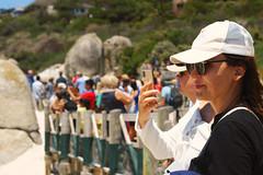 Penguin Fans (Steven.Harrison) Tags: southafrica honeymoon penguin crowds crowd tourist people camera phone photography portrait portraitphotography adventure travel travelphotography