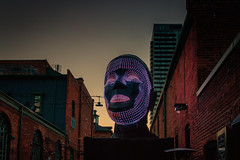 Talking Heads by Viktor Vicsek @ Toronto Light Festival 2018 (A Great Capture) Tags: agreatcapture agc wwwagreatcapturecom adjm ash2276 ashleylduffus ald mobilejay jamesmitchell toronto on ontario canada canadian photographer northamerica torontoexplore winter l'hiver light fest festival distillery district 2018 night dusk distillerydistrict tolightfest talkingheads viktorvicsek