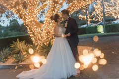 DSC08600 (Ted Foto) Tags: wedding realwedding sydneywedding love light brideandgroom