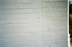 Brick wall painted white (Matthew Paul Argall) Tags: canonsnappy20 fixedfocus 35mmfilm kodakultramax400 kodak400 ultramax 400isofilm wall brick bricks brickwall white random