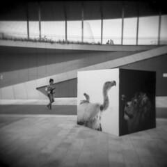 Milano (Valt3r Rav3ra - DEVOted!) Tags: holga holgacfn lomo lomography toycamera plasticcamera medioformato mediumformat analogico analogica analog analogue film 120 6x6 ilford ilfordfp4 bw biancoenero blackandwhite valt3r valterravera visioniurbane urbanvisions streetphotography street milano