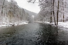 Winter at the river (Andi Fritzsch) Tags: winterwonderland winter winterphotography river riverscape riverscapephotography snow ice cold nature naturephotography landscape landscapephotography erzgebirge monochrom monochrome