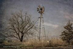 The Windmill (Kool Cats Photography over 11 Million Views) Tags: windmill farming farm farmequipment oklahoma rural textures texture trees grass