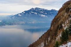 Rigi and Lake Lucerne (Bephep2010) Tags: 2019 7markiii alpen alpha berg bürgenstock ilce7m3 lakelucerne nebel nidwalden rigi sel24105g schnee schweiz see sony switzerland vierwaldstättersee alps fog lake mountain snow ⍺7iii obbürgen kantonnidwalden ch