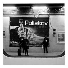 the perfect drug (japanese forms) Tags: ©japaneseforms2019 кошка ネコ ボケ味 モノクロ 日本フォーム 自転車 黒と白 bw blackwhite blackandwhite blancoynegro bokeh candid cat cats gata gato gatto kat kater katje katze kot kotka monochrome neko nineinchnails parijs paris poliakov pussy random schwarzweis square squareformat strasenfotografie straatfotografie streetphotography theperfectdrug vodka zwartwit