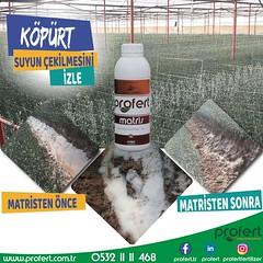 matrisköpürt (Profert Gübre) Tags: sebze seracılık sebzecilik sera sulama seed soil stres damlama design tarım toprak tarlabitkileri tarla tabangübre