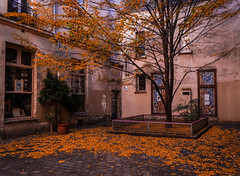 Parisian courtyard (Jim Nix / Nomadic Pursuits) Tags: 2470mm europe france jimnix lightroom luminar macphun nomadicpursuits paris sony sonya7ii strasbourg architecture courtyard culture history landmark travel
