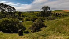 View Accross The Shire (pboolkah) Tags: canon matamata waikatoregion newzealand nz canon5d canon5dmkiv