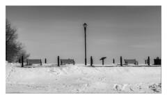 Les bancs (Ylliab Photo) Tags: ylliabphoto ylliab hiver winter bac banc neige oka quebec blanc