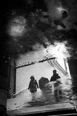reflections (Rien van Voorst) Tags: streetphotography straatfotografie strasenfotografie fotografíacallejera photographiederue fotografiadistrada monochrome city urban highcontrast wasser water reflections spiegel berlin deutschland germany puddlegram