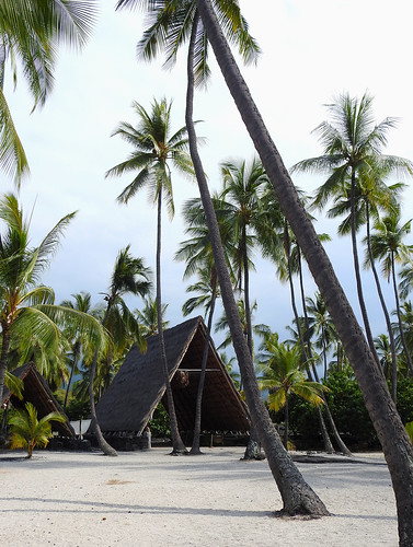 Honaunau Bay - Beach Refuge