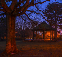 Dawn in the Park (James Etchells) Tags: frome somerset victoria park dawn night long exposure landscape photography south west uk england britain tree urban structure architecture outdoors outdoor nature natural world surreal light dark