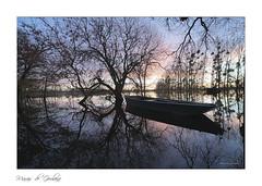 Marais de Goulaine - lever du jour (Bruno-photos2013) Tags: marais maraisdegoulaine loireatlantique paysdeloire sunrise water landscape paysage reflets reflection bretagne nature naturepaysage barque plate