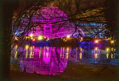 Kew Gardens Light Festival (tramsteer) Tags: england europe pond lake kew gardens lightfestival tramsteer geotag