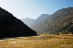 20190207-04-Misty valley (Roger T Wong) Tags: 2019 nz newzealand rogertwong sel24105g sony24105 sonya7iii sonyalpha7iii sonyfe24105mmf4goss sonyilce7m3 southisland westmatukitukivalley bushwalk hike landscape outdoors tramp trek valley walk