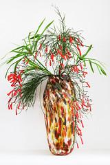 51-365 (lindaelizabeth) Tags: flowers vase handpainted glass colorful stilllife vertical decorative tall vegetation white background