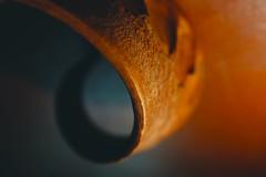 Guess for MacroMondays   #ThroughHerLens (7 Blue Nights) Tags: whatisthat macromondays macro colours light orange shadows blue twisted seedpod dof bokeh depthoffield abstract throughherlens rx10