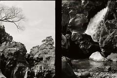 "Shizuoka (Filming location of ""Seven Samurai"" by Akira Kurosawa) (kiku-chiyo) Tags: olympus pen ft film fujifilm analog japan"