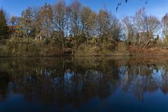 Baggersee   Quarry pond (MLopht   Dortmund) Tags: nrw ruhrgebiet dortmund berghofen dortmundberghofen dortmundaplerbeck see teich baggersee regenrückhaltebecken wasser baum bäume pflanzen himmel oberfläche landschaft sony alpha 6300 sonyalpha6300 ilce6300 sonyalpha 1650mm