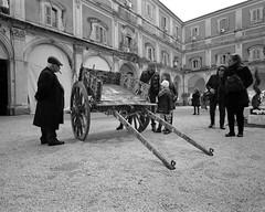 Carretto Siciliano (stefanobiserni) Tags: sicily sicilia siciliasicily catania street film analog biserni tmax400 d76