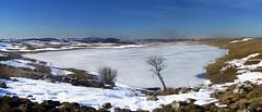 Objectivité relative (Saint Andéol 1/2) (renécarrère) Tags: lacdesaintandéol auvergne aubrac hiver etang gelé