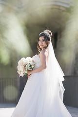 DSC07720 (Ted Foto) Tags: wedding realwedding sydneywedding love light brideandgroom