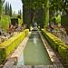 DSC04423.jpeg - Granada