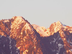 Sunshine on the Mountain Tops . (Irene, W. Van. BC) Tags: sunshineonthemountaintops sunset sunsetskies sunsets sunsetoutlines sun mountains snowymountains allmountains snow snowscenes snowcappedmountains trees treesilhouettes treebranches treesinsunsetskies forest slopes mountainslopes outdoors outdoorscenes 1001nights 1001nightsmagiccity 1001nightsmagicwindow northshoremountains palomablancasong sunshineonmyshoulderssong johndenver georgebakerselection favouritesongs sunshineonmyshoulders songsbyjohndenver lapalomablanca originalsongs mountainviews sunnymountains