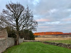 Kirkton Of Logie Buchan - Aberdeen Scotland - 04/01/2019 (DanoAberdeen) Tags: inexplore 2019 danoaberdeen candid amateur buchan countryside outdoors walk scotland bluesky nature historicscotland scotch nikond750 ellon ythanriver hiking hiddenscotland highlands bonnyscotland bonnie scottishhistory auchmacoy church parish graveyard cemetery headstone winter autumn spring summer history museum gordondistrict tree