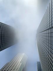 The fog is enchanting (pratikpatelcs) Tags: sanfrancisco salesforcetower karlthefog fog building bay architecture millenniumtower shotoniphone inexplore explored