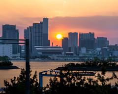 Odaiba (Tom Neumann) Tags: sony sonyalpha ilce6000 a6000 55210 japon odaiba japan atardecer sunset sun sol shadows water bay bahia city skycrapers sky