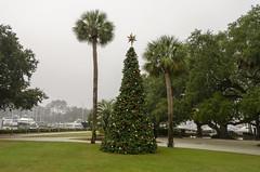 Christmas Tree at the Harbor (rschnaible) Tags: hilton head south carolina outdoor landscape the park christmas tree