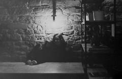 Argentique (Flophotographies) Tags: analogue argentique film filmisnotdead blackandwhite ilford 400iso canon vintage portrait grain pellicule hp5plus