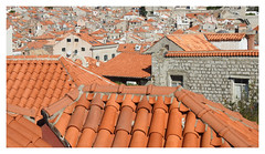 I stayed in the grey one with an orange roof! :0p (The Stig 2009) Tags: orange roof tiles dubrovnik croatia concrete walls grey thestig2009 thestig stig 2009 2019 tony o tonyo nikon rooftop old city