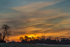 Golden skies...cold hands! (Photo_stream_this) Tags: laxton nottinghamshire golden skies trees clouds fields road