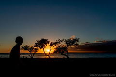 Atardecer en Playa del Muerto (juan.sangiovanni) Tags: sunset playa atardecer sun sol árboles