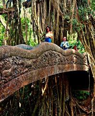 INDONESIEN, Bali , unterwegs in Ubud , im Affenwald, Brücke, 17937/11159 (roba66) Tags: bali urlaub reisen travel explore voyages rundreise visit tourism roba66 asien asia indonesien indonesia insel island île insulaire isla ubud affenwald padangtegal monkeyforest macaca bridge ponti brücke