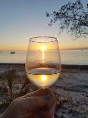 2-11-2019:  Drinking the sunset. Siesta Key, FL