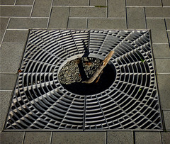 The Sundial (Steve Taylor (Photography)) Tags: sundial snapped broken grid grill architecture block metal steel newzealand nz southisland canterbury christchurch cbd city shadow tree