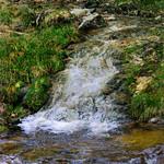 Wildbach im Schwarzwald thumbnail