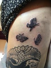 butterfly and moth (aya@laperranegra) Tags: adding small moth butterflytattoo japan tokyo tokyotattoo tokio japon traveljapan japantrip harajuku shibuya tattoogirl tatuaje tatuajes 東京 タトゥー tattoostudio