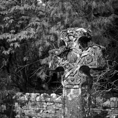 (a.pierre4840) Tags: olympus omd em10 mzuiko 25mm f18 micro43 11 squareformat bw blackandwhite noiretblanc church graveyard cemetery dorset england dof depthoffield selectivefocus artfilter grainy fotor luminar3