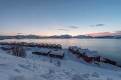 Mauro Amoroso © (Mauro_Amoroso) Tags: landscape norway norvegia lofoten lofotenisland ice cold blue sunset sunrise pink mauroamorosoadventures exploring explore sun boat house nital nikonitalia nationalgeographic tour landscapes seascapes seascape paesaggio snow winter shell sea seaside morning bluehour