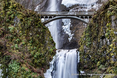 Iconic Falls (Gary Grossman) Tags: falls waterfall multnomah water ice icicles cold winter oregon northwest landscape nature garygrossman garygrossmanphotography columbiarivergorgenationalscenicarea landscapephotography multnomahfalls winterlight pacificnorthwest longexposure