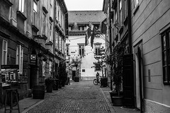 silent street (jernej.cucek) Tags: blackandwhite person people text signage bw monochrome street art streetart timeless time shadow black light white flowers entrance door exit