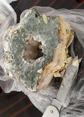 Moldy Cheese (cowyeow) Tags: cheese mold moldy stinky odd weird smelly gross georgia georgian caucuses easteurope travel city market old tbilisi wine wineandcheese food gourmet mouldy mould spoiled musty stanky dry fungus fungi aged