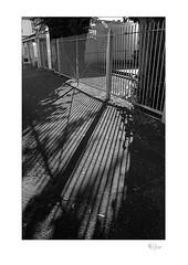 Shadow Series 001 (radspix) Tags: yashica 230af kyocera af f3545 ilford fp4 plus pmk pyro 2885